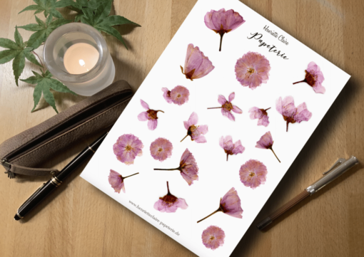 Aufkleber gepresste Kirschblüten rosa Sticker