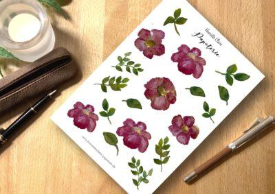 Aufkleber Anemonen Blätter groß Henriette Claire