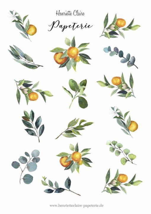 Aufkleber Sticker Orangen und Blätter