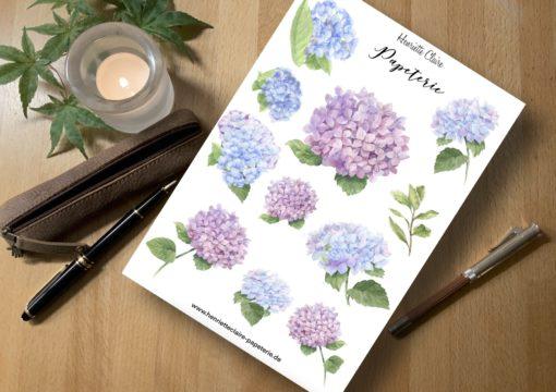 Hortensien Hortensia Hydrangea sticker henriette claire handdrawn
