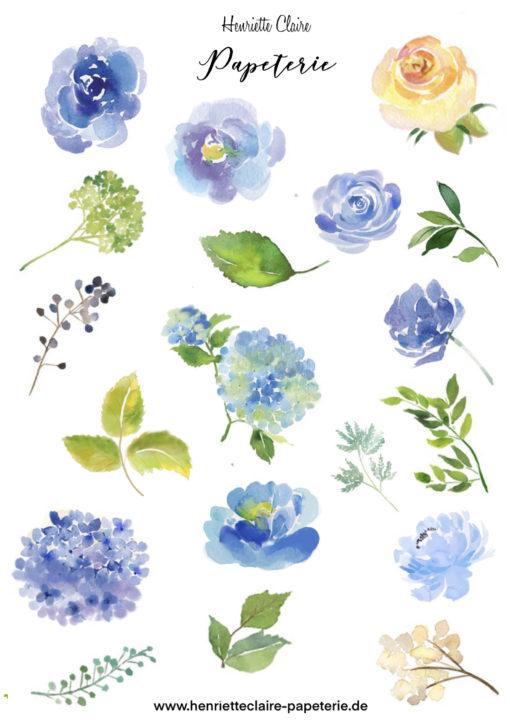Aufkleber Aquarell Hortensien Blumen Blätter zart