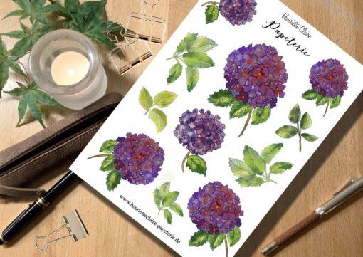 Aufkleber Hortensien Hydrangea violett