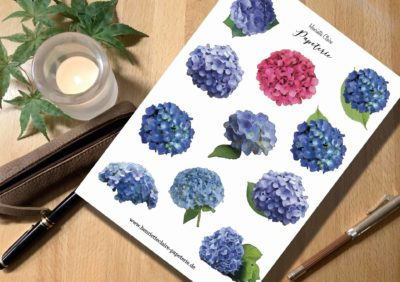 Hortensien blau rosé sticker aufkleber aquarell