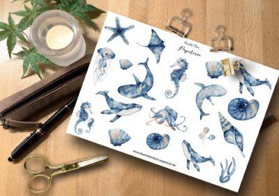 Aufkleber Wale Muscheln Aquarell